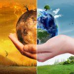 Waste Management Regulations – Shedding Light on Responsible Waste Management